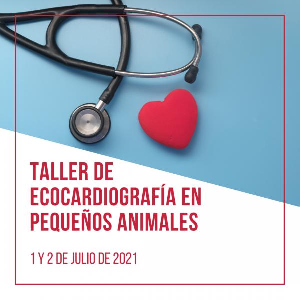 Taller ecocardiografía